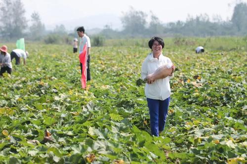 """021完美健康食品南瓜溯源研习班湖北举行"""""""